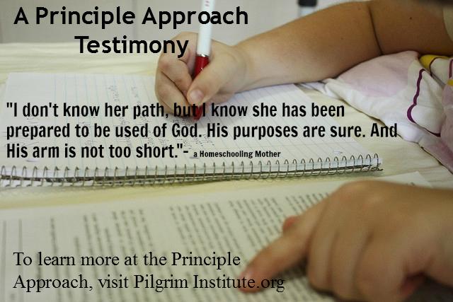 Principle Approach Testimony
