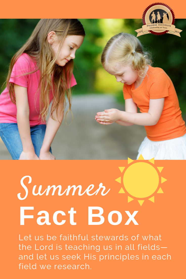 Create a summer fact box for your summer learning at home. A summer fact box is a fun way to record the ways the Lord has demonstrated Providence through the lives of individuals, creation, and events.